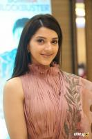 Mehreen Pirzada at F2 Movie 50 Days Celebrations (12)