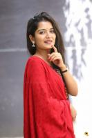 Priyanka Jain at Vinara Sodara Veera Kumara Press Meet (9)