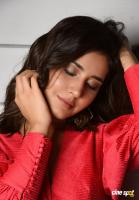 Raashi Khanna Latest Pictures (2)