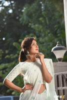 Raashi Khanna Latest Pictures (19)