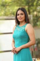 Nandita Swetha Interview Photos (25)