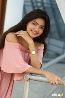 Shirin Kanchwala Photos (21)