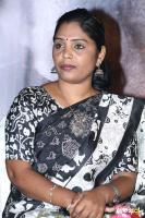 Para Movie Audio Launch (40)
