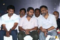 Para Movie Audio Launch (50)