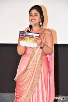 Geetha Chalo Movie Audio Launch (1)