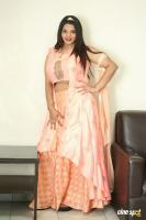SK Attiya at Danger Love Story Movie Press Meet (6)