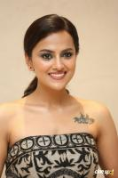 Shraddha Srinath at Jersey Thank You Meet (34)