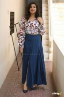 Prashanthi Charuolingah at Falaknuma Das Trailer Launch (1)