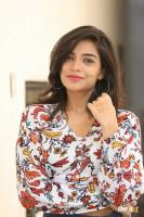 Prashanthi Charuolingah at Falaknuma Das Trailer Launch (11)