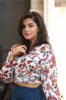 Prashanthi Charuolingah at Falaknuma Das Trailer Launch (26)