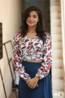 Prashanthi Charuolingah at Falaknuma Das Trailer Launch (4)