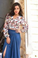 Prashanthi Charuolingah at Falaknuma Das Trailer Launch (42)