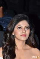 Lisaa 3D Movie Pre Release Event (29)