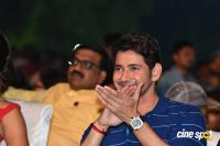 Maharshi Movie Vijayotsavam (76)