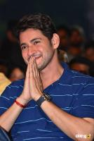 Maharshi Movie Vijayotsavam (78)