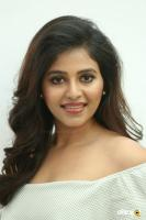 Anjali at Lisaa 3D Movie Pre Release Event (29)