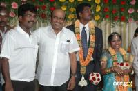 Kanalkannan son Marriage Wedding  Reception Photos