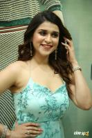 Mannara Chopra at Sita Movie Pre Release Event (10)