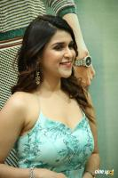 Mannara Chopra at Sita Movie Pre Release Event (11)