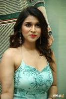 Mannara Chopra at Sita Movie Pre Release Event (12)