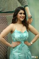 Mannara Chopra at Sita Movie Pre Release Event (13)