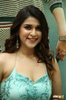 Mannara Chopra at Sita Movie Pre Release Event (14)