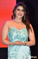 Mannara Chopra at Sita Movie Pre Release Event (20)