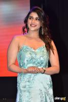 Mannara Chopra at Sita Movie Pre Release Event (21)