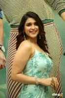 Mannara Chopra at Sita Movie Pre Release Event (6)