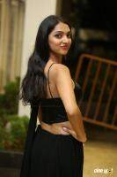 Jazba Singh at Hippi Movie Pre Release Event (31)
