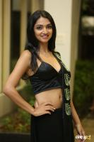 Jazba Singh at Hippi Movie Pre Release Event (4)