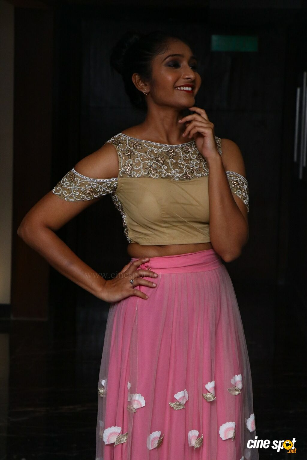 Meera Mitun Press Meet about Miss Tamil Nadu Diva (6)
