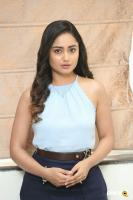 Tridha Choudhury at 7 Movie Press Meet (10)