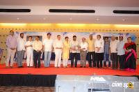 S V Rangarao Book Launch By Chiranjeevi Photos