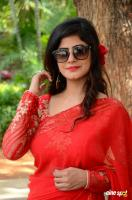 Tulika Singh at Last Seen Trailer Launch (29)