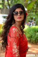 Tulika Singh at Last Seen Trailer Launch (35)
