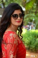 Tulika Singh at Last Seen Trailer Launch (39)