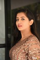 Rashi Singh at Gem Movie Opening (13)