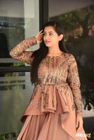 Rashi Singh at Gem Movie Opening (4)