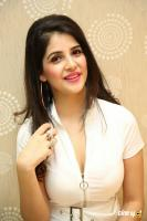 Kashish Vohra at First Rank Raju Pre Release Event (23)
