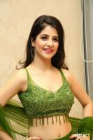 Kashish Vohra at First Rank Raju Pre Release Event (63)