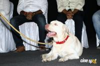 Gurkha Movie Audio Launch (24)