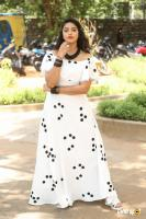 Nakshatra at Palasa Movie First Look Launch (29)