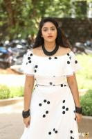 Nakshatra at Palasa Movie First Look Launch (31)