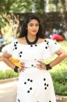 Nakshatra at Palasa Movie First Look Launch (34)