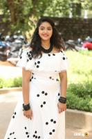 Nakshatra at Palasa Movie First Look Launch (8)