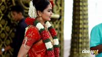 Vishnu Priya Wedding photos (21)