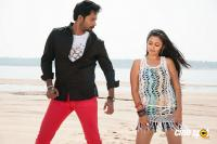 Dhamki Telugu Movie Photos