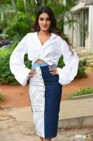 Nidhhi Agerwal at Ismart Shankar Success Meet (30)
