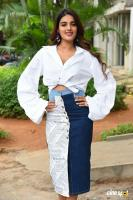 Nidhhi Agerwal at Ismart Shankar Success Meet (31)